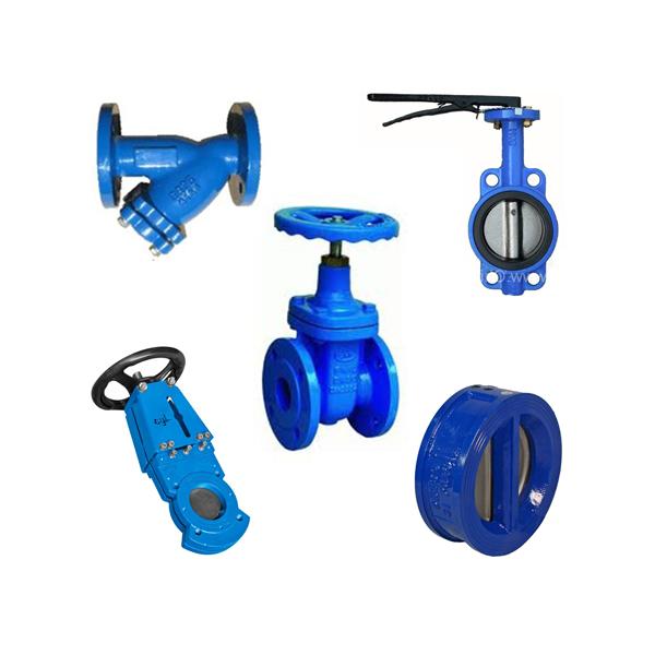 cast iron valves 1